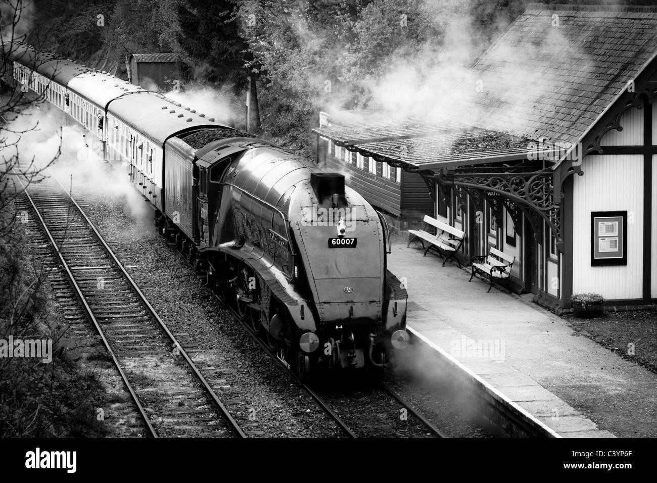 Sir Nigel Gresley departs Birkhill Station - Stock Image