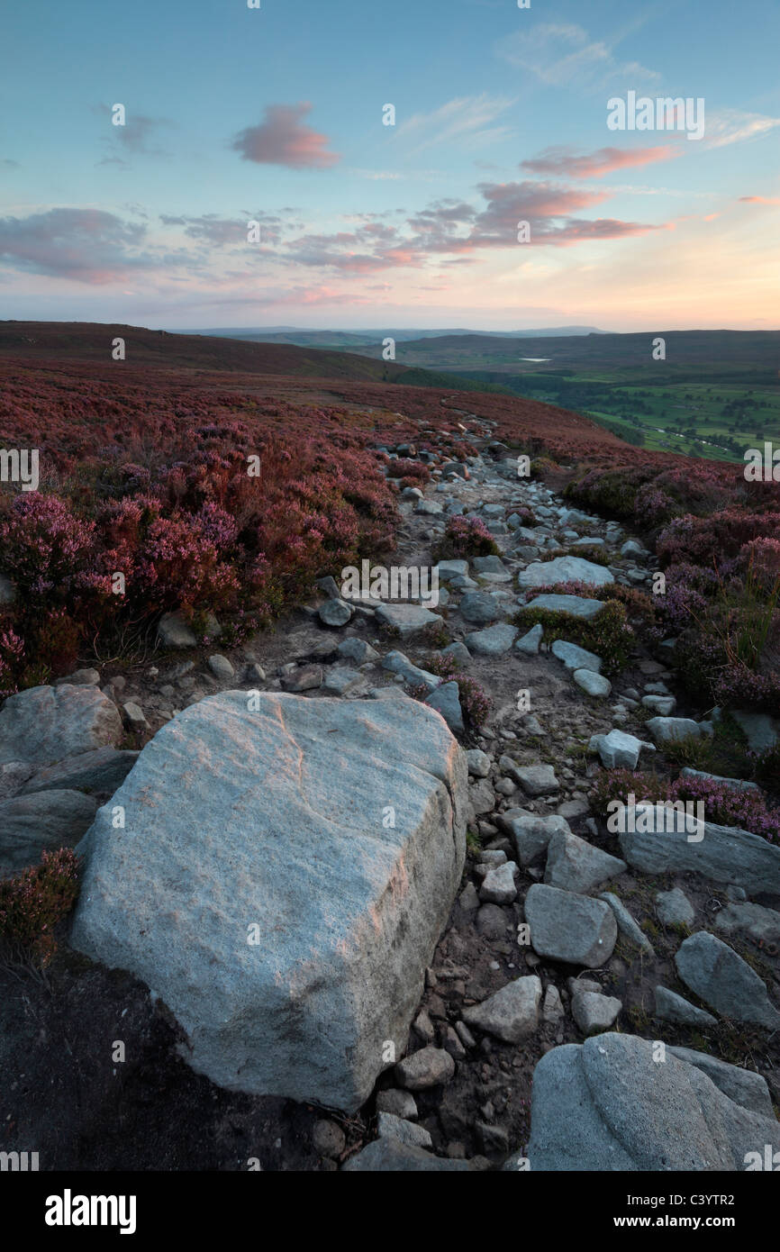 Ancient rock formations and heather on the lonely landscape of Barden Fell in Yorkshire, England - Stock Image