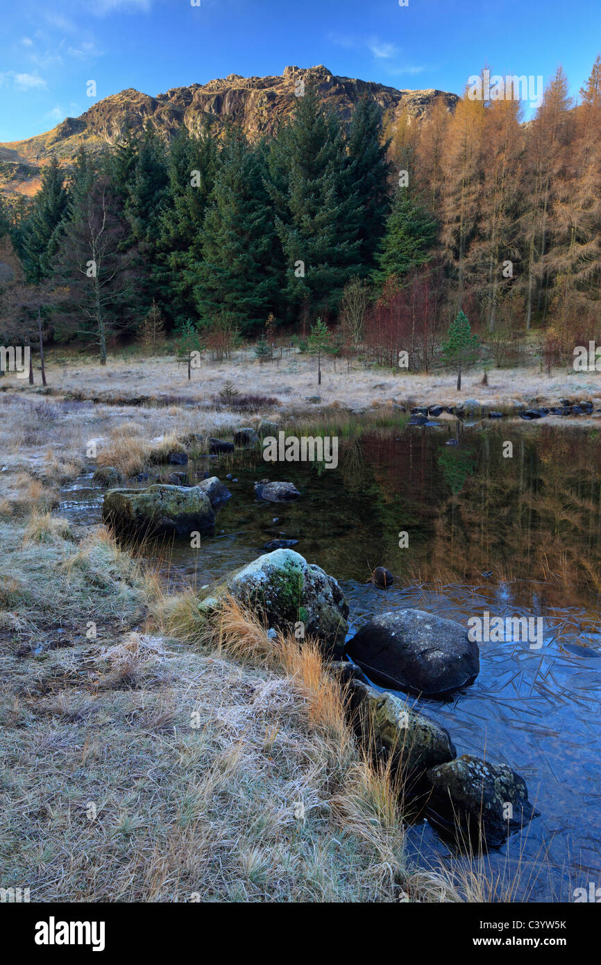 Late autumn light on the icy edges of a calm Blea Tarn in the Lake District of England Stock Photo