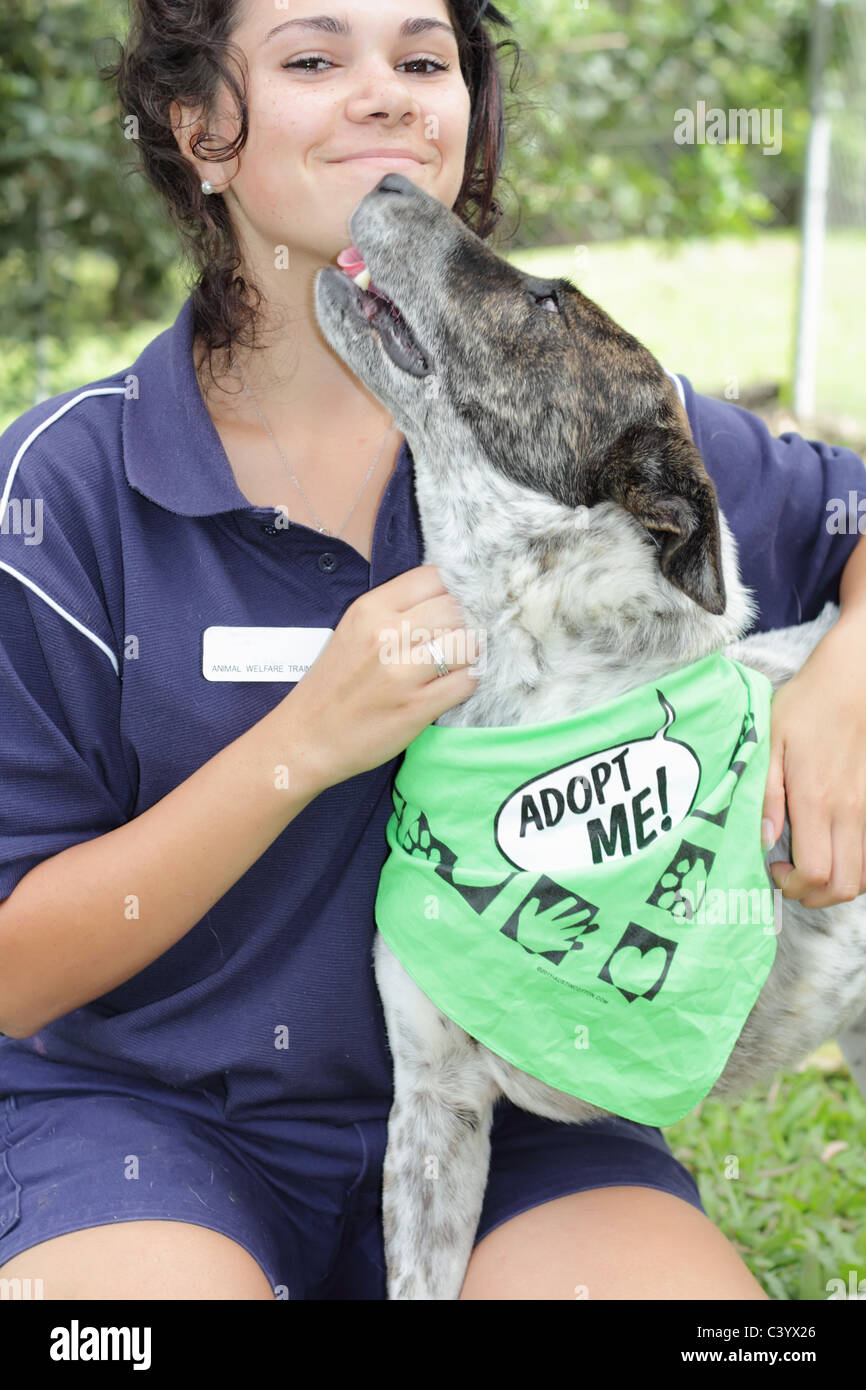 Animal Handler at Local Animal Shelter and Handicapped Dog - Stock Image