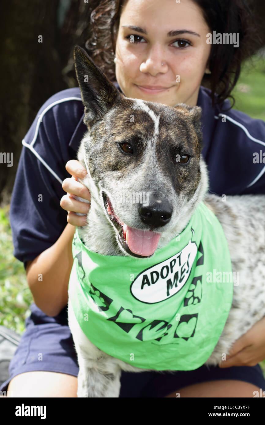 Animal Adoption - Stock Image