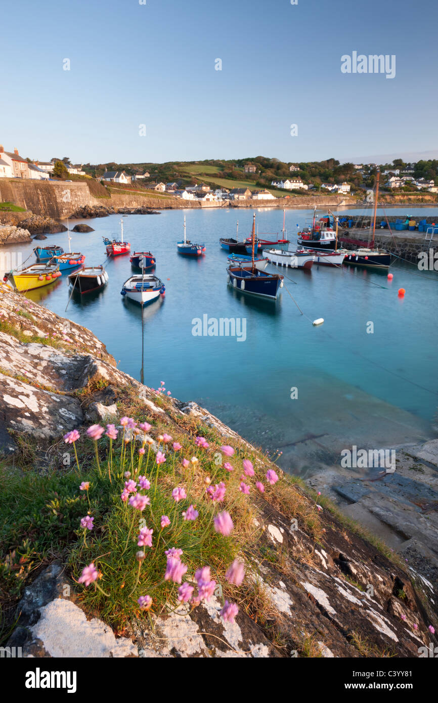 Early morning harbour scene at the picturesque fishing village of Coverack, South Cornwall, England. Spring (May) - Stock Image