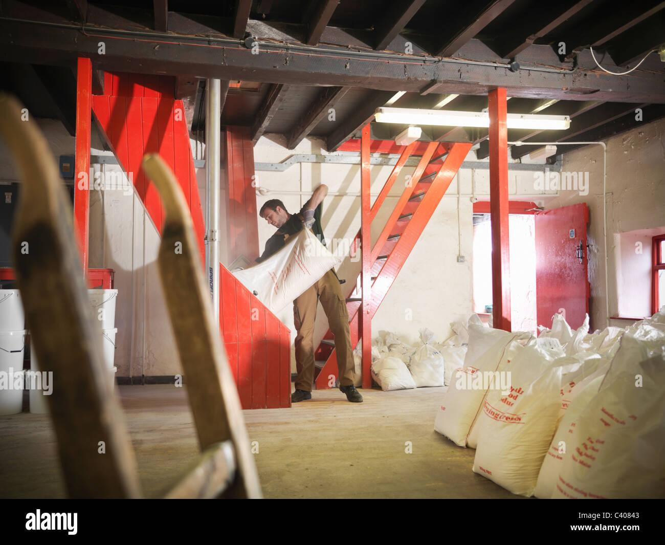 Worker emptying sack of grain in brewery - Stock Image