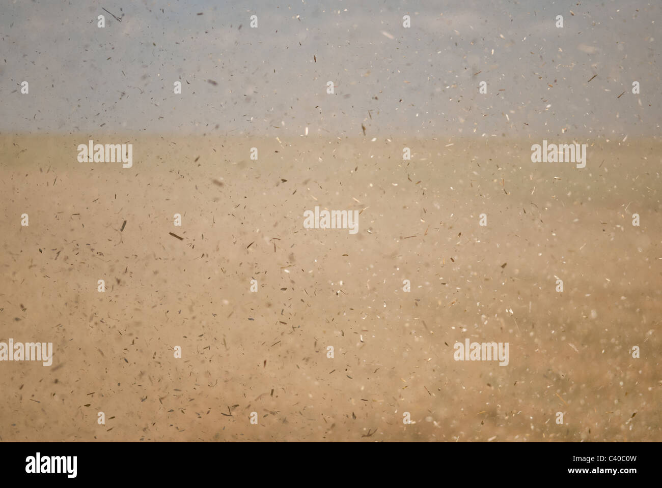 Dust particles being thrown in the air by a harvesting combine. - Stock Image