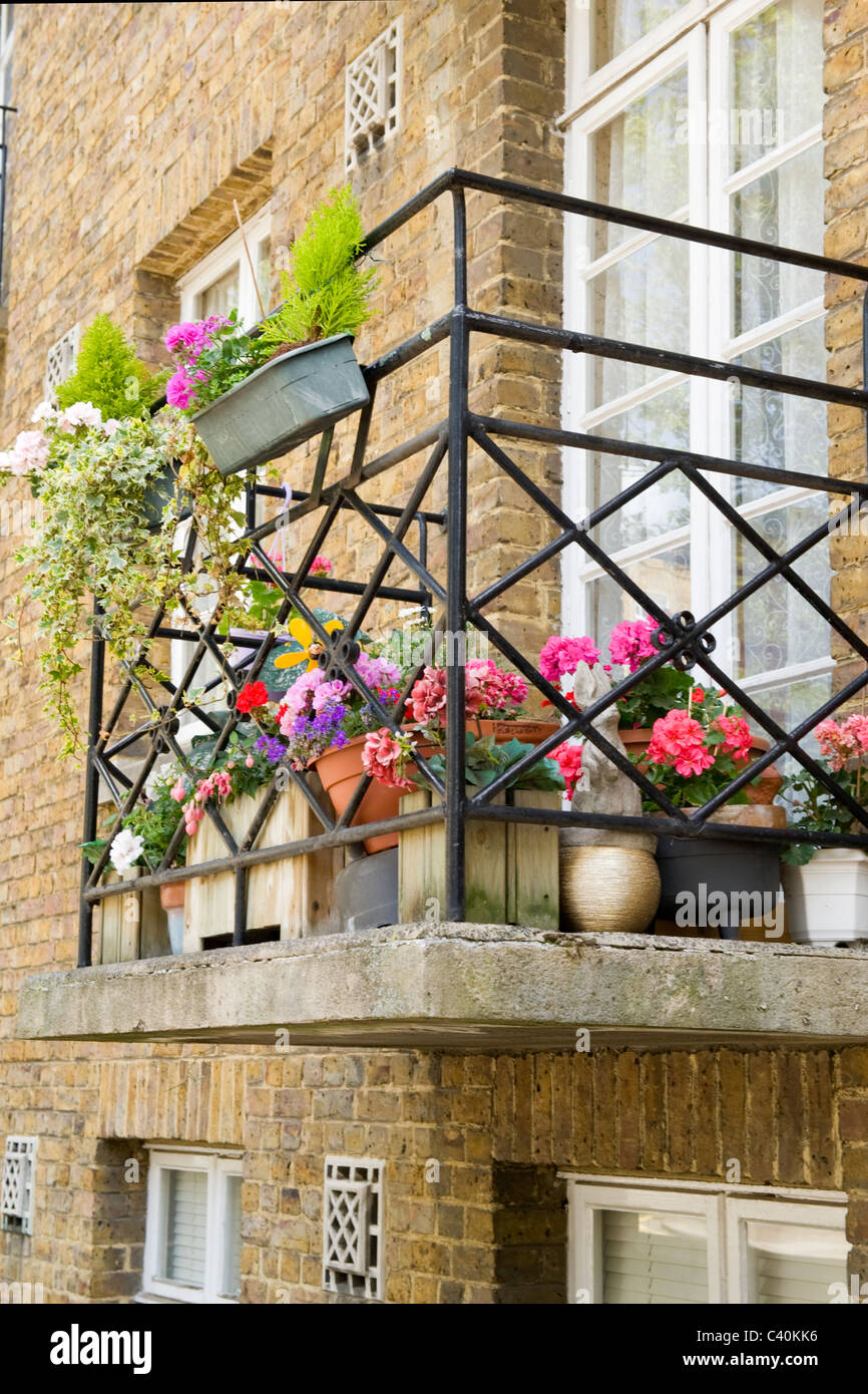 London Kings Cross urban garden with pots window boxes & planters on balcony of inner city flat or apartment - Stock Image