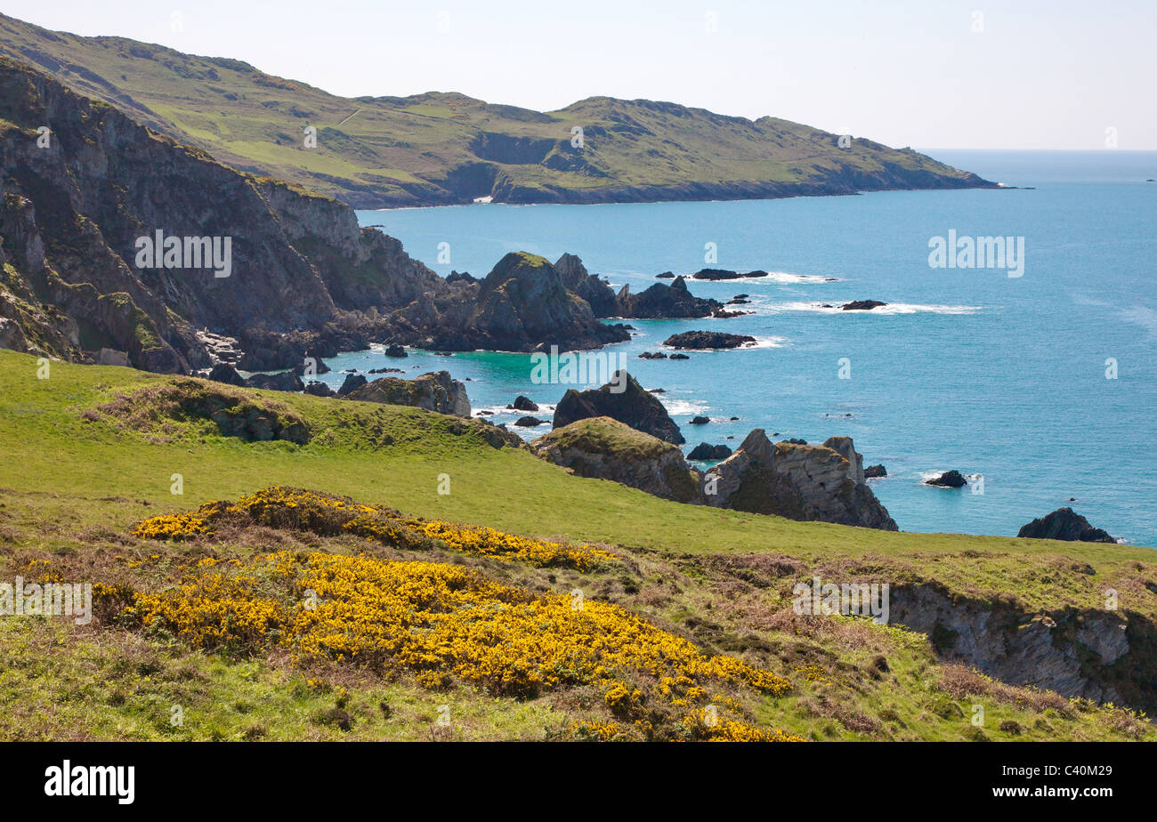 View from Bull Point to Morte Point on the south west coast path in North Devon near Woolacombe - Stock Image