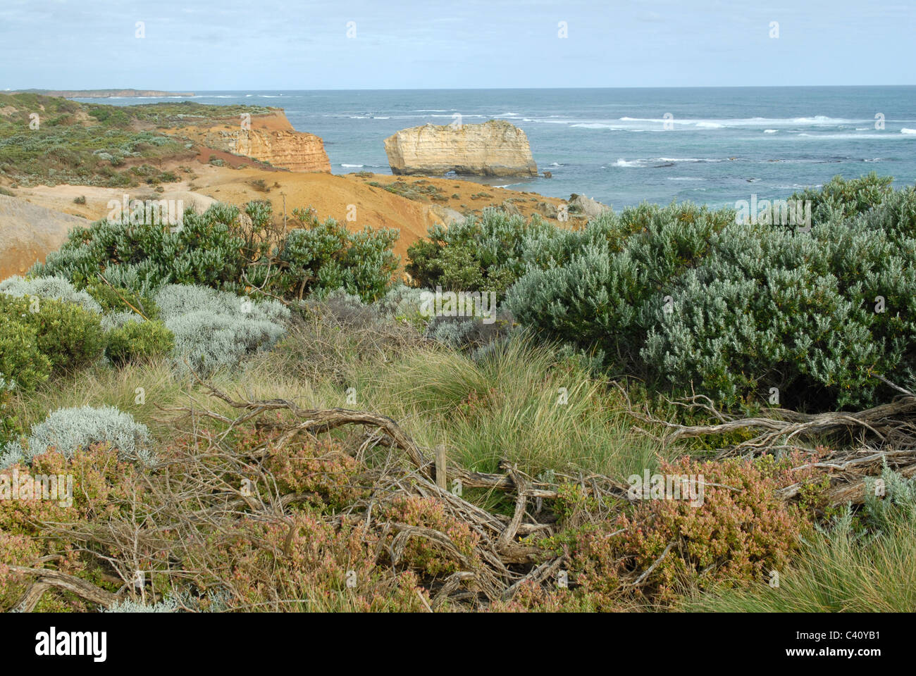 Vegetation and rock formation in the Bay of Isles on the Great Ocean Road, Victoria, Australia - Stock Image