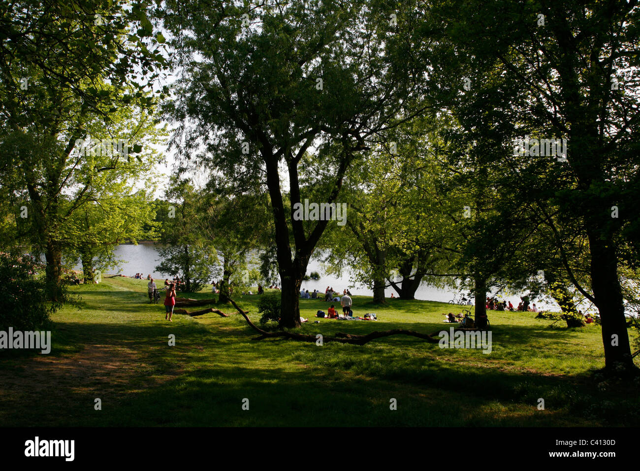 View down to the boating pond of Highgate Ponds, Hampstead Heath, Highgate, London, UK - Stock Image