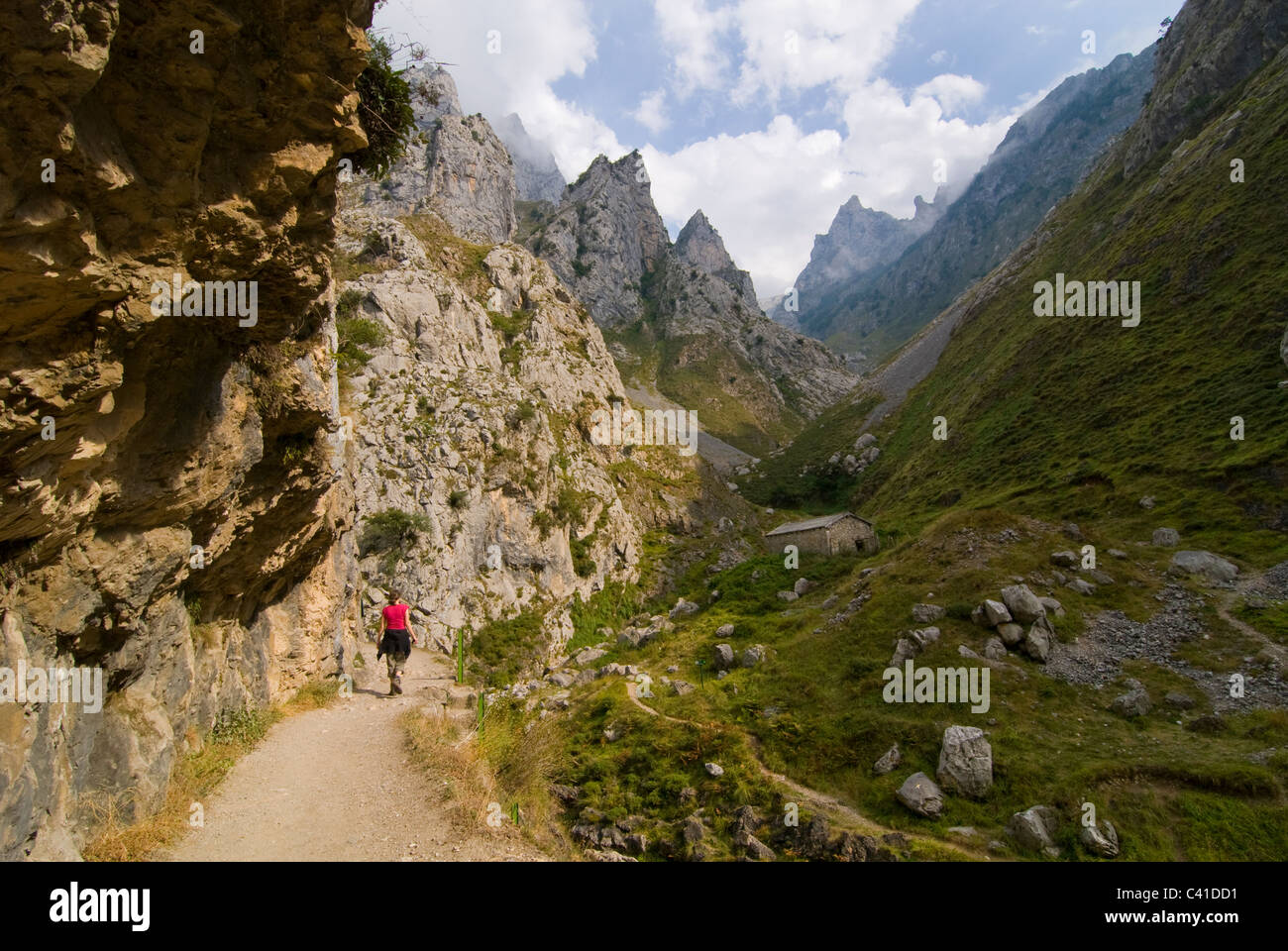 Walker on the dramatic footpath in the Garganta del Cares, Near Cain. Picos de Europa, Asturias. - Stock Image