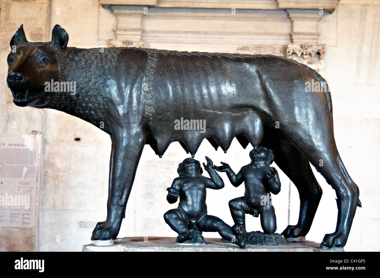 The symbol of Rome- Etruscan bronze statue of the capitoline she-wolf and twins Romulus and Remus in the Capitoline - Stock Image