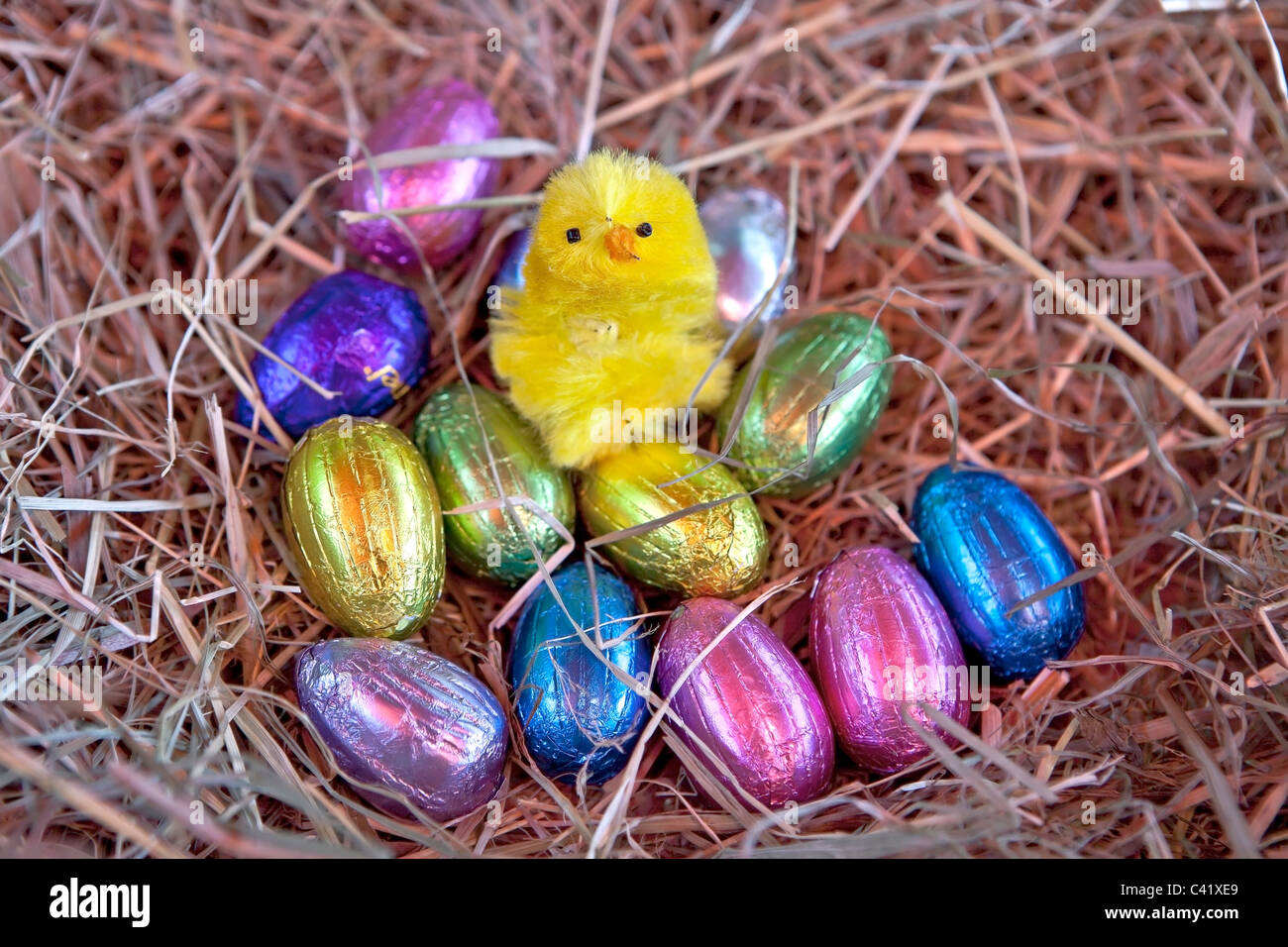 Easter egg with a chick in a nest of straw - Stock Image