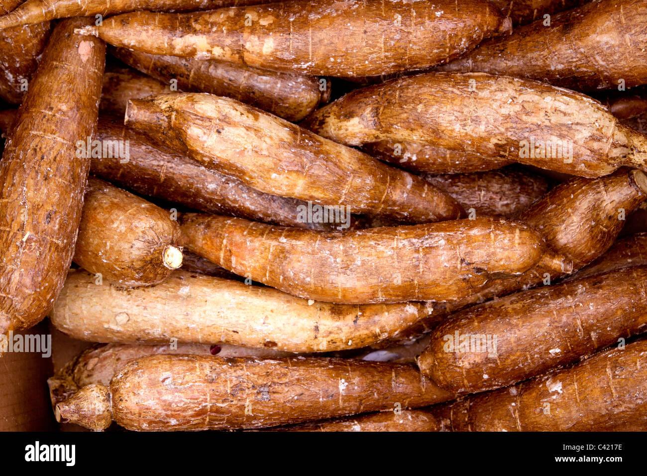 cassava yucca rhizomes vegatable food pattern market background - Stock Image