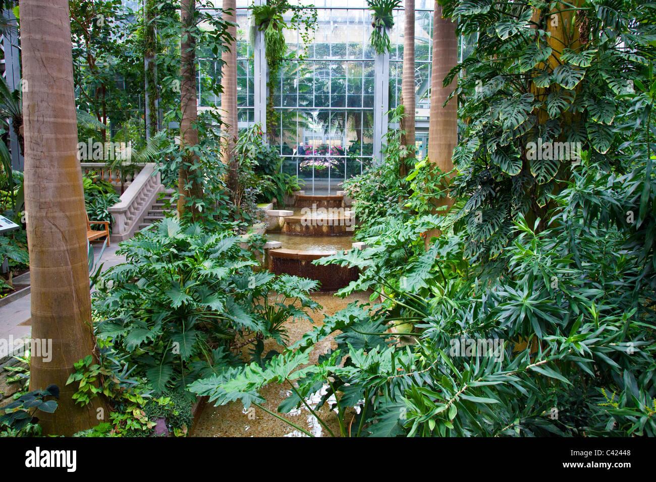 united states botanic garden conservatory washington dc stock image - Botanical Garden Washington Dc