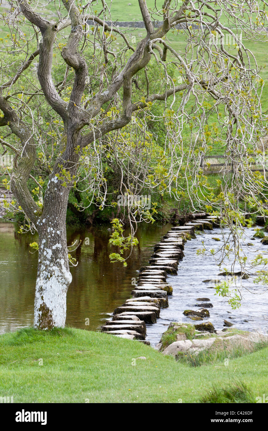 Beezelys Ford stepping stones, near Ingleton, North Yorkshire - Stock Image