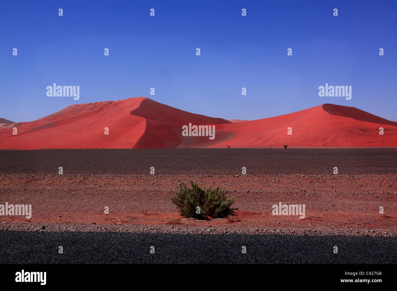 sand dune II Stock Photo