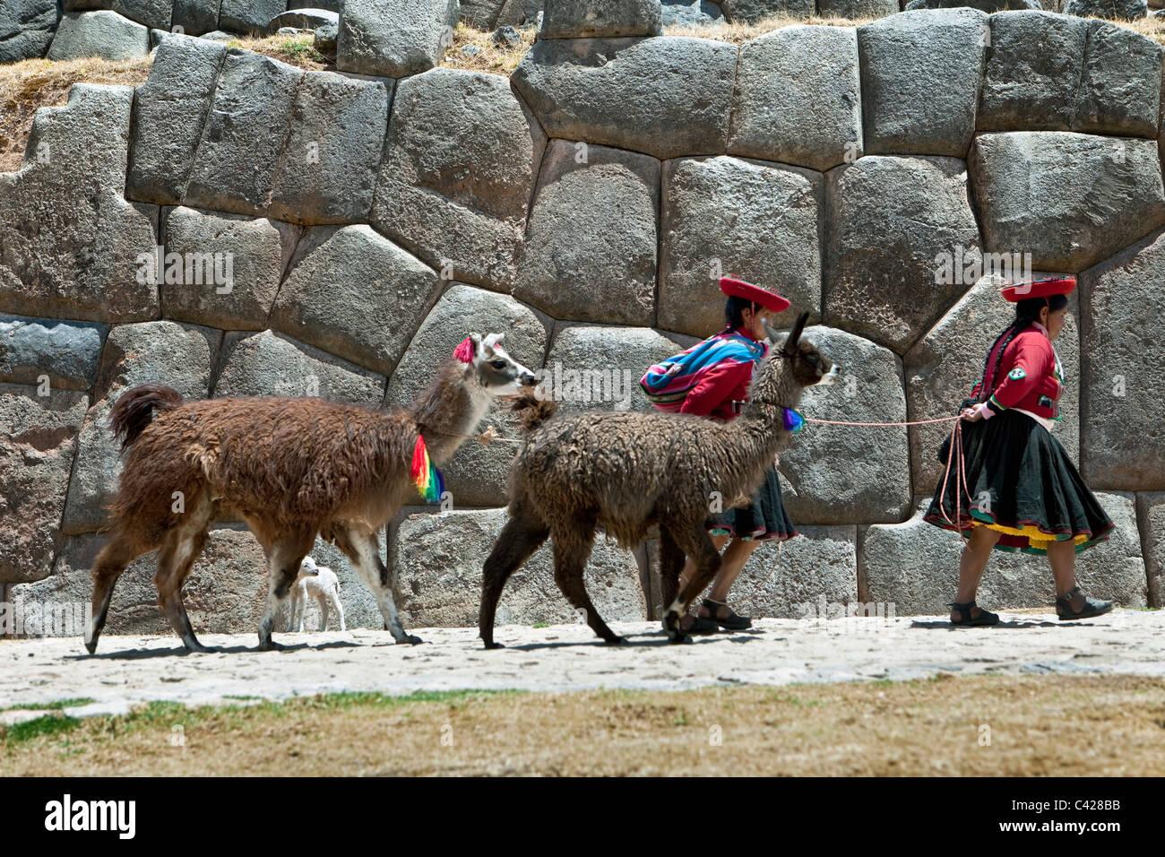 Peru, Cusco, Cuzco, Saqsayhuaman, Sacsayhuaman, Sacsaywaman. Indian women with llamas and Alpaca. UNESCO World Heritage - Stock Image