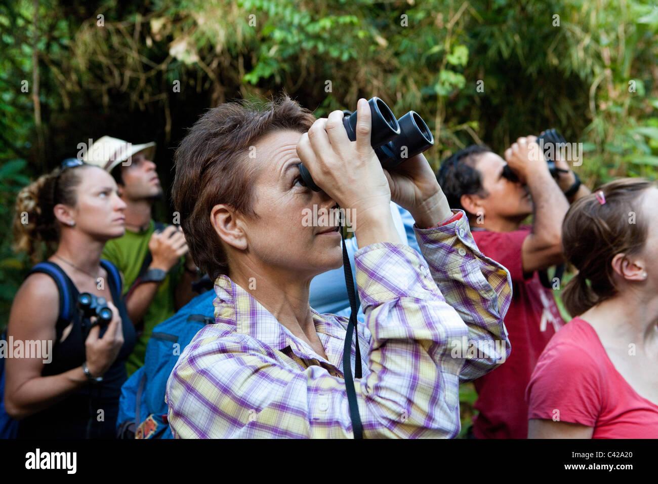 Peru, Cruz de Mayo, Manu National Park, UNESCO World Heritage Site, Pantiacolla mountains. Tourists hiking in forest. - Stock Image