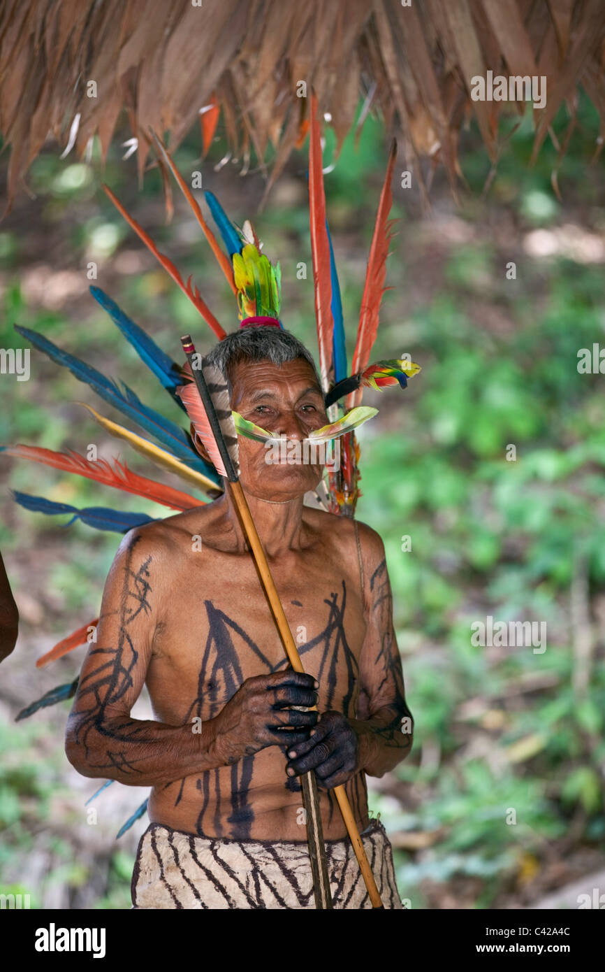 Manu National Park, Pantiacolla mountains. indigenous man from Harakmbut indians in ceremonial dress with macaw - Stock Image