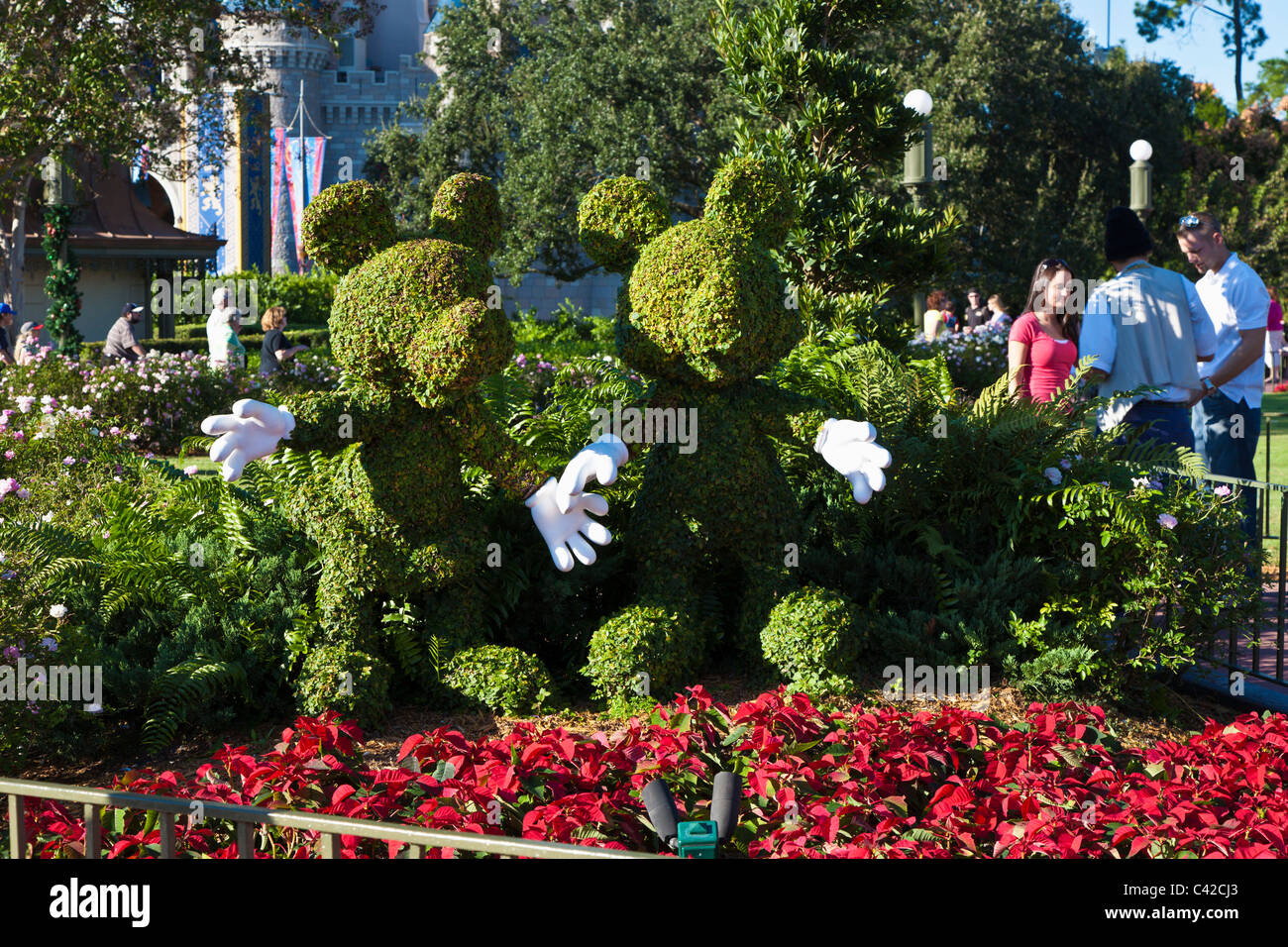 Mickey Mouse And Minnie Mouse Topiary In The Magic Kingdom At Disney Stock Photo Alamy