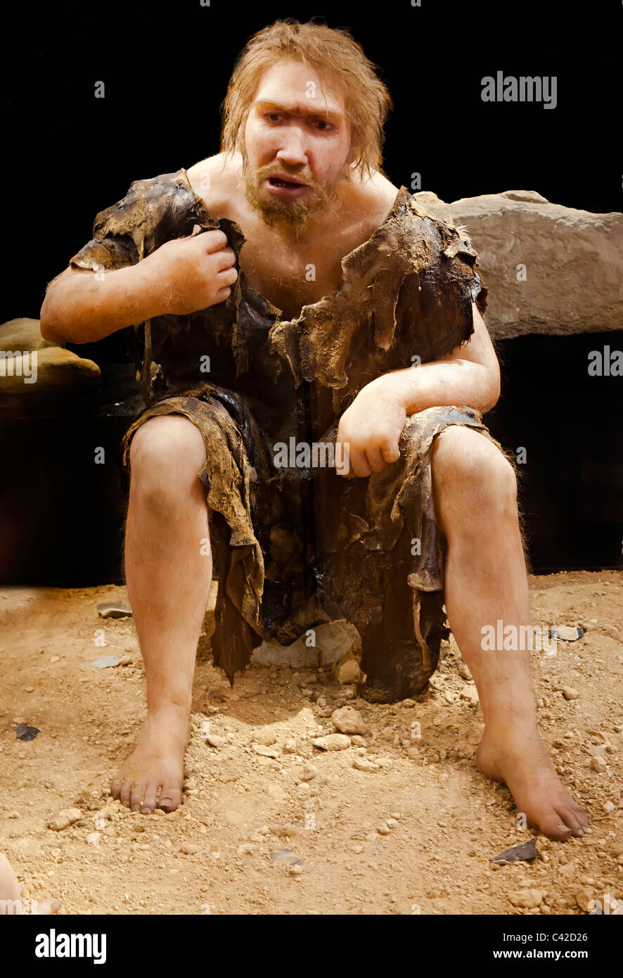 Life size model of neanderthal man museum at Les Eyzies France - Stock Image