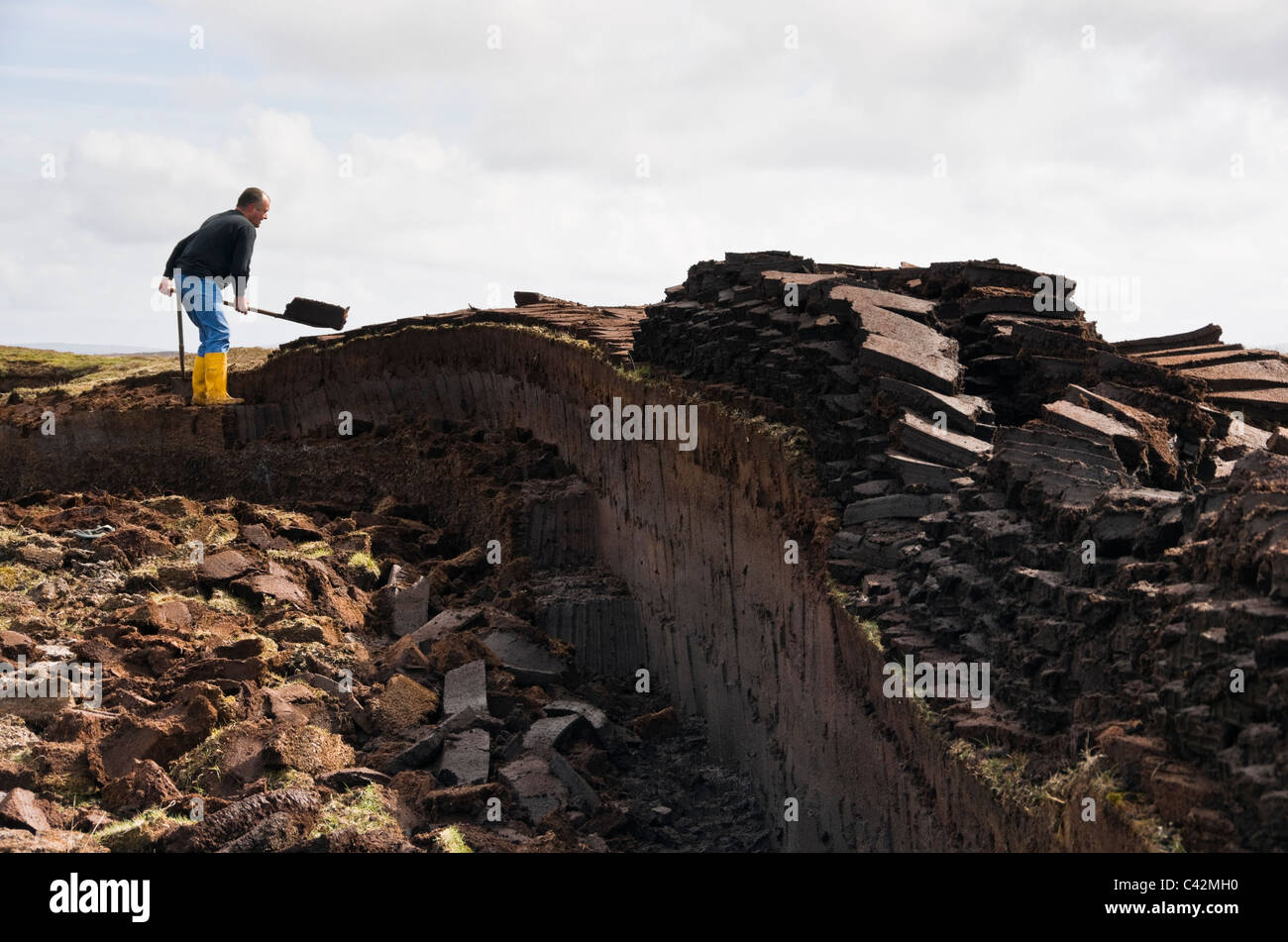 Man cutting peat blocks for traditional fuel on the Shetland Islands, Scotland, UK, Britain - Stock Image