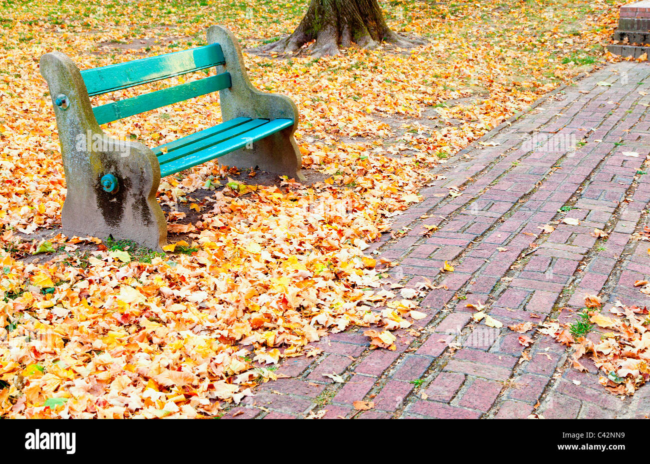 Park bench - Stock Image