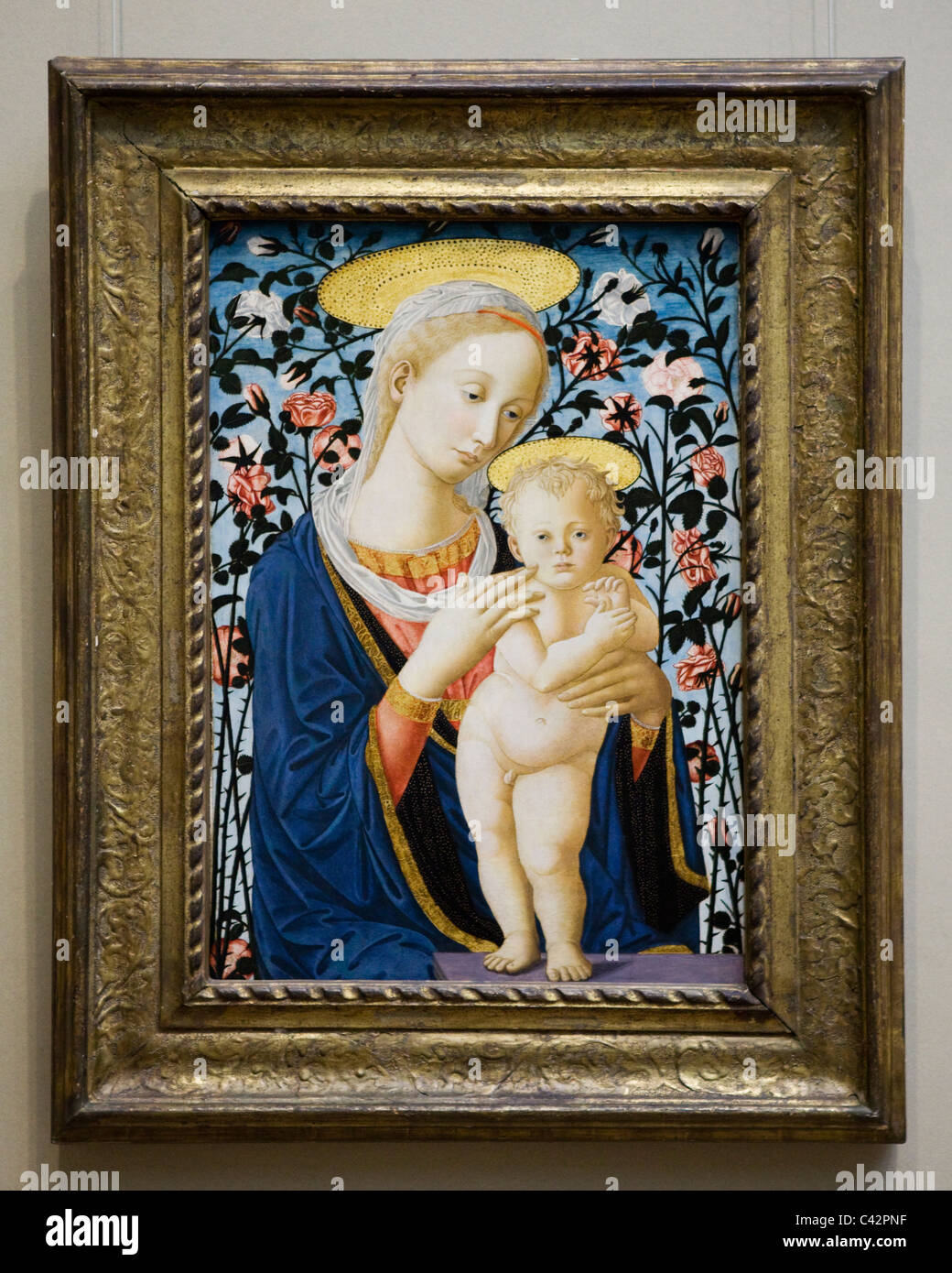 'Madonna and Child' by Follower of Fra Filippo Lippi and Pesellino, 1470 - Stock Image