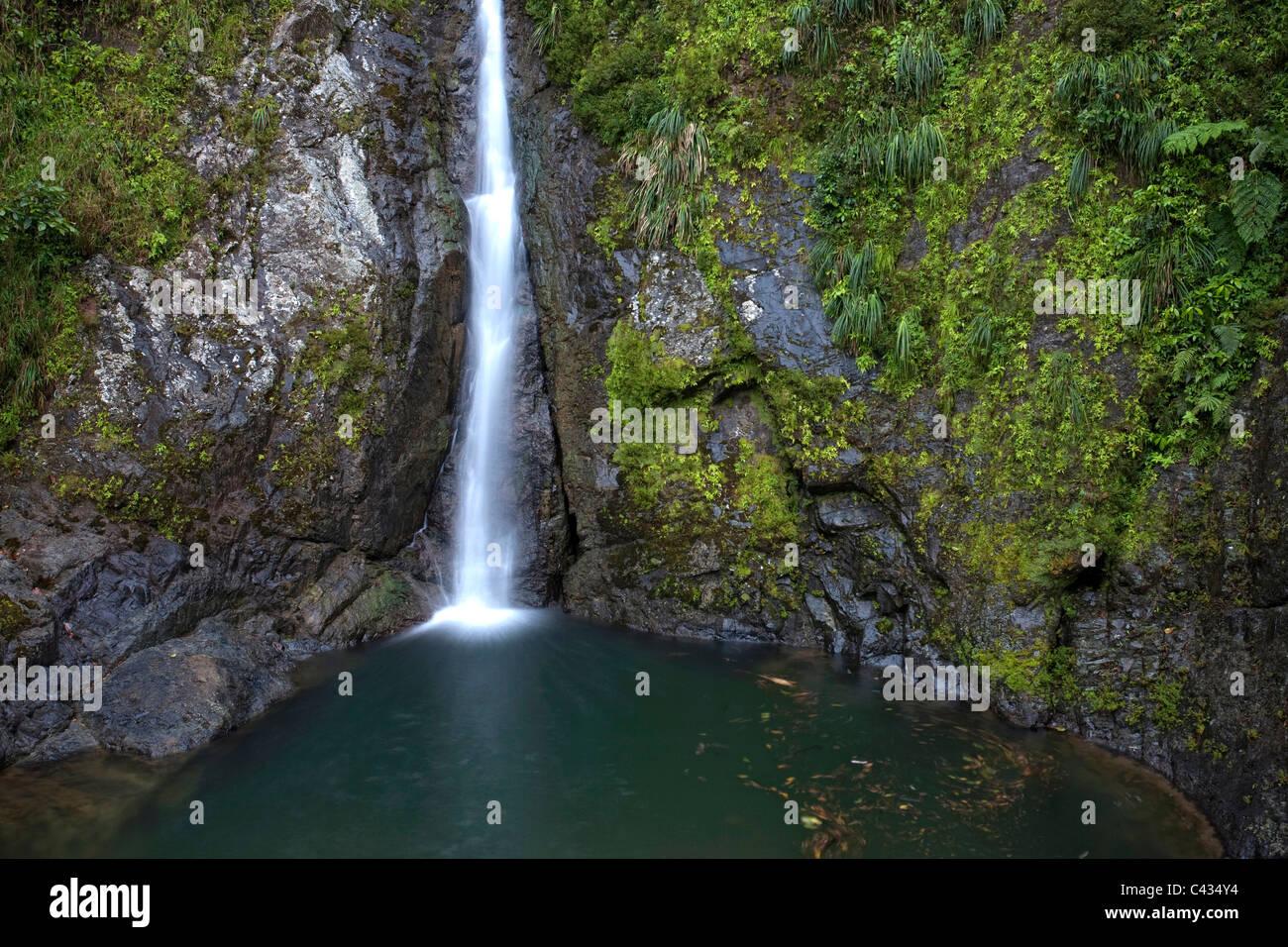 Usa, Caribbean, Puerto Rico, Central Mountains, Toro Negro Forest, Dona Juana Waterfall - Stock Image