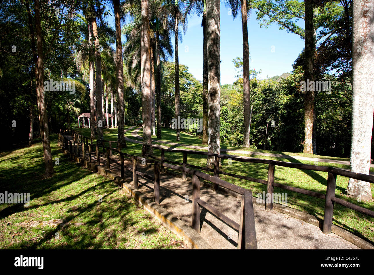 Usa, Caribbean, Puerto Rico, Central Mountains, Parque Ceremonial Indigena Caguana (Taino Ceremonial Site) - Stock Image