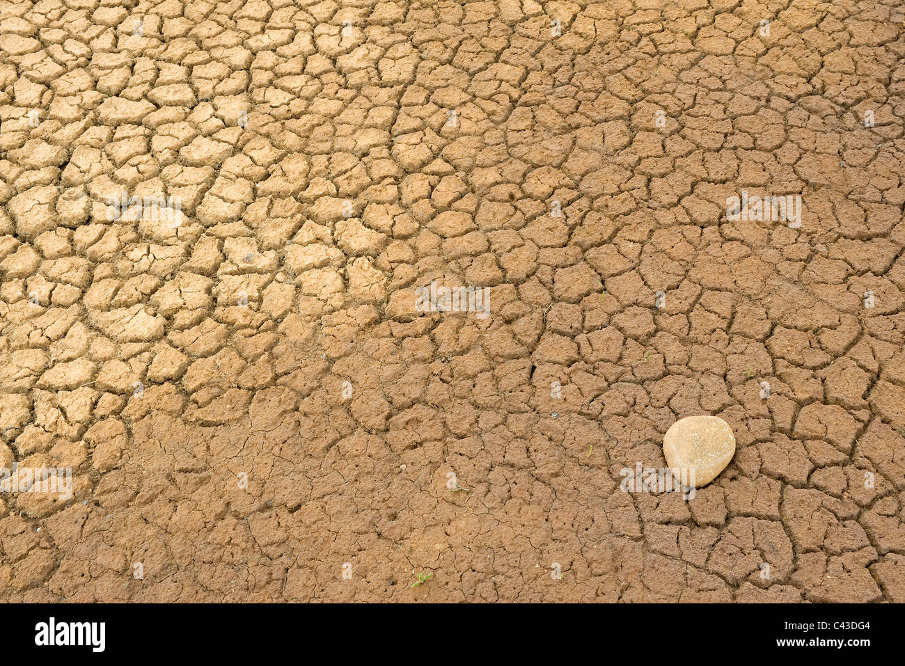 dry parched earth - Stock Image