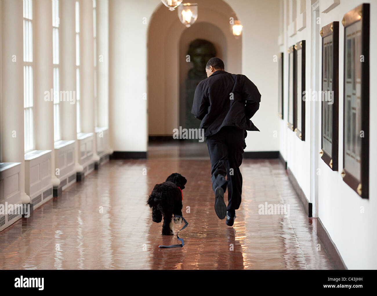 President Barack Obama with pet dog Bo at the White House - Stock Image
