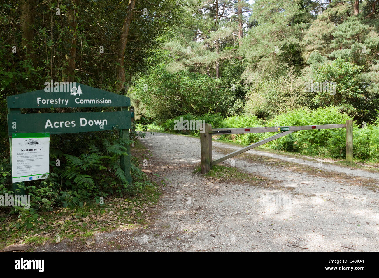 Forestry Commission sign, Acres Down, New Forest, Hampshire, Uk - Stock Image