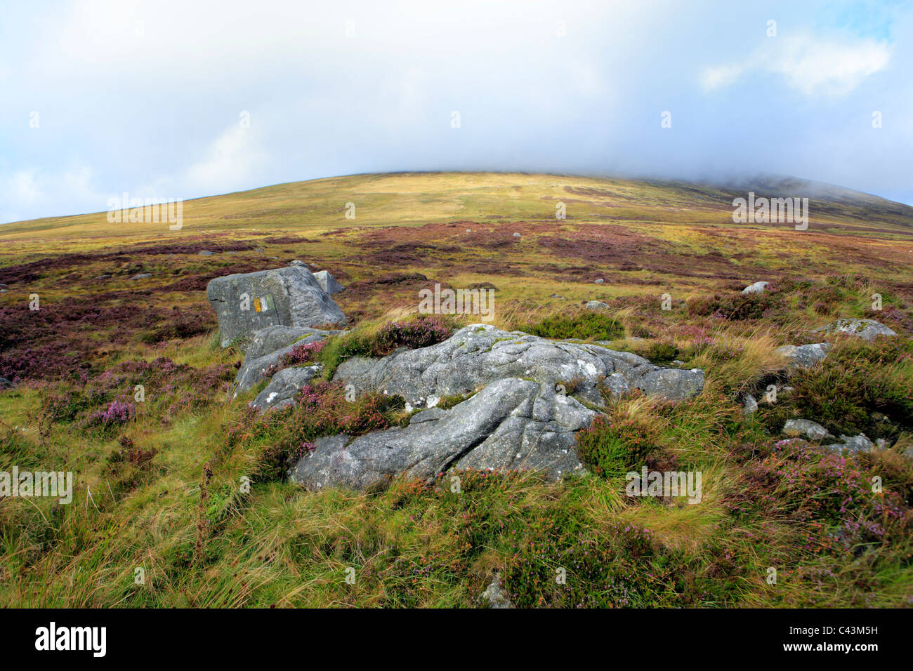 Eire, Europe, European, Ireland, Irish, Western Europe, travel destinations, Landscape, nature, Wicklow mountains, - Stock Image