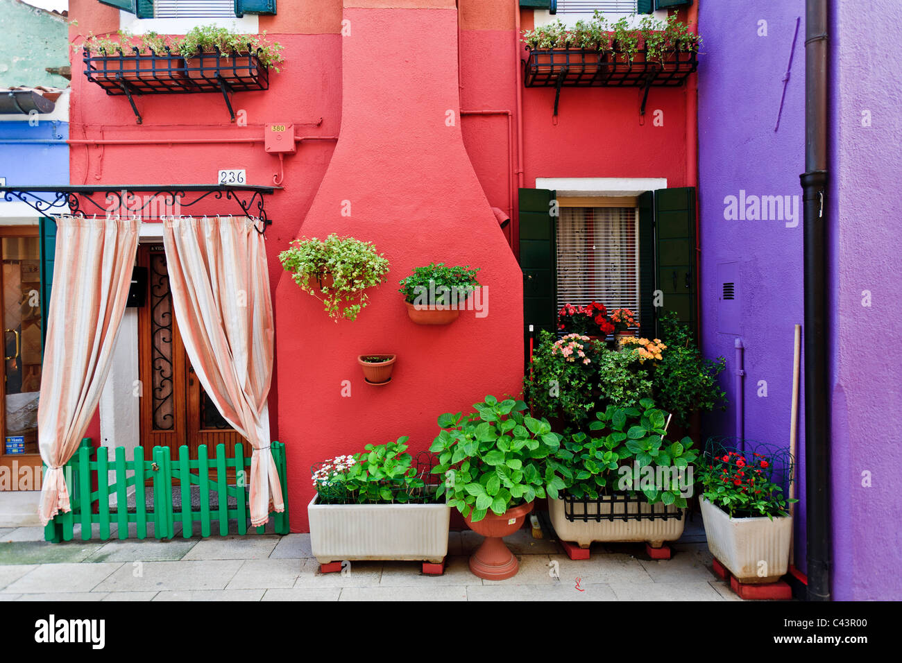 Burano, Island, Venice, colorful, houses, door with curtain, flower ...