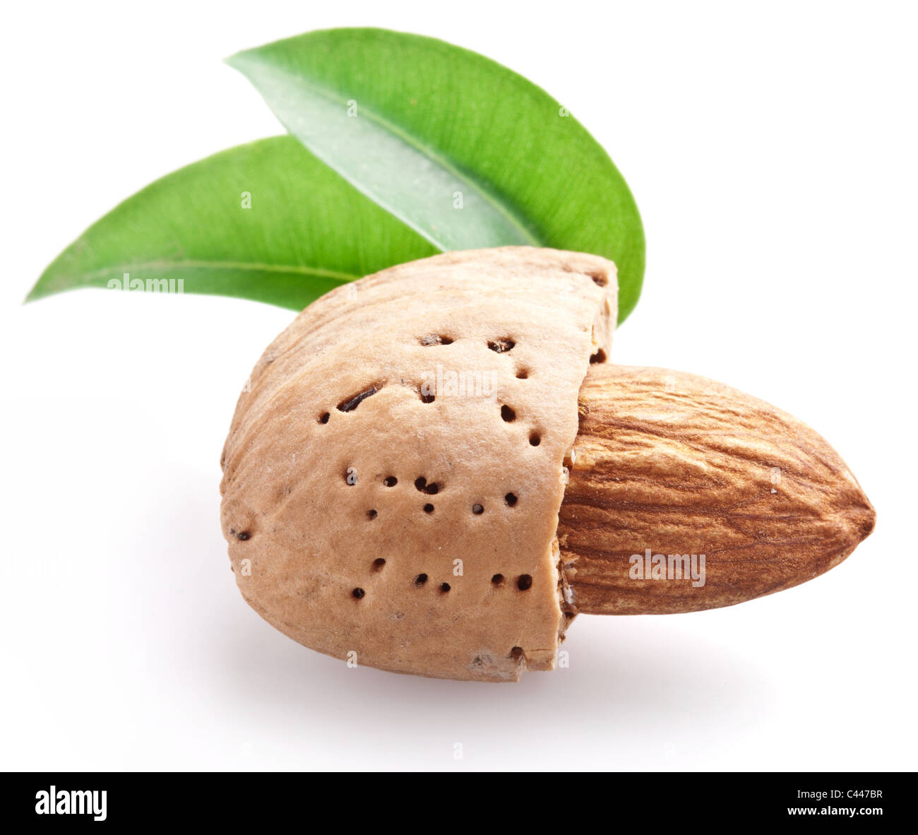 Open almond nut with leaves - Stock Image