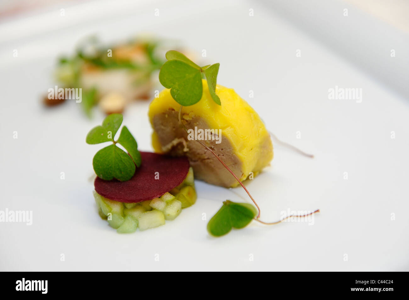 A gastronomic dishes of foie gras with apples - Stock Image