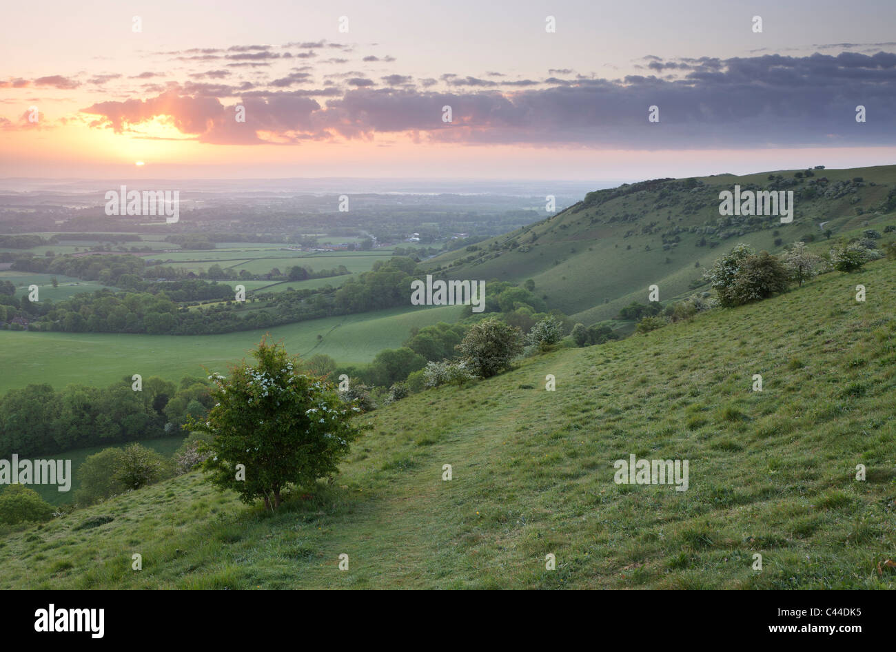 A beautiful sunrise over Ditchling Beacon, South Downs National Park, East Sussex, England, UK - Stock Image