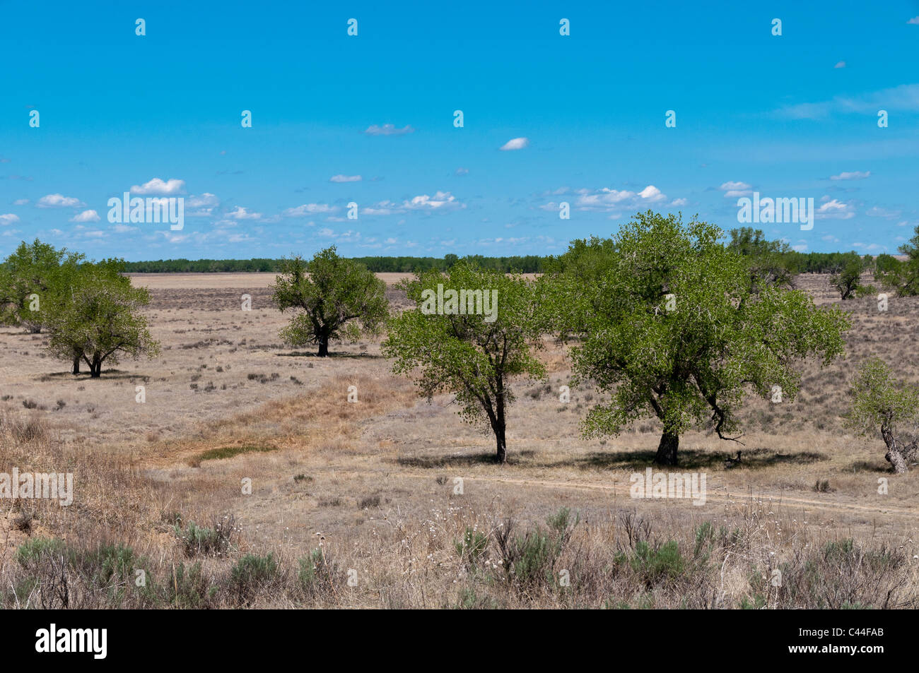 Big Sandy Creek, Sand Creek Massacre National Historic Site, Eads, Colorado. - Stock Image