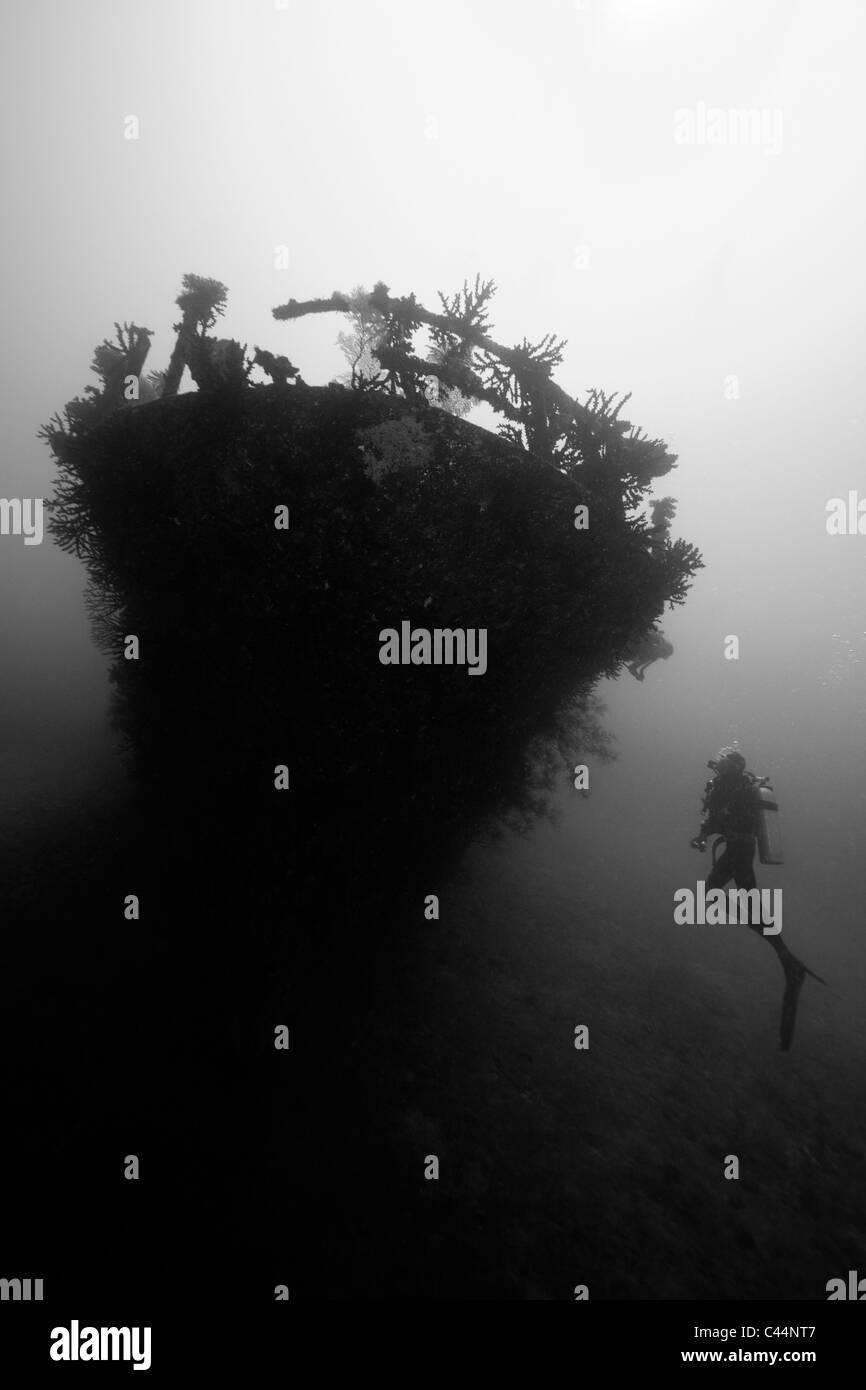 Scuba Diver at Carpet Cove Wreck, Beqa Lagoon, Viti Levu, Fiji - Stock Image