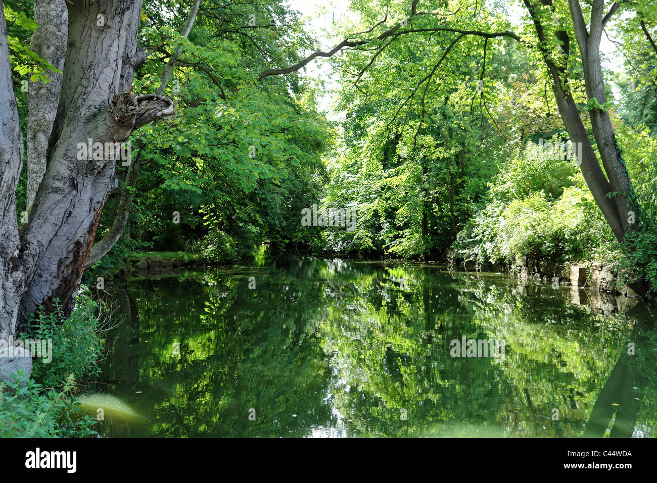 Germany, Mecklenburg-West Pomerania, Wismar, lime garden, pit, river, flow, artificially, watercourse, trees, canals, - Stock Image
