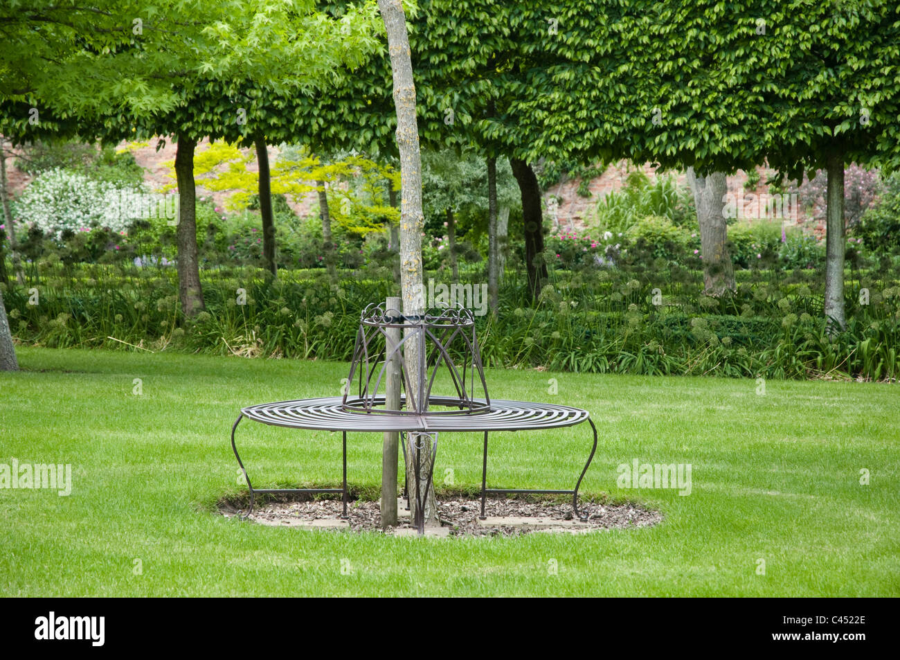 Wrought Iron seat in an English Country garden - Stock Image