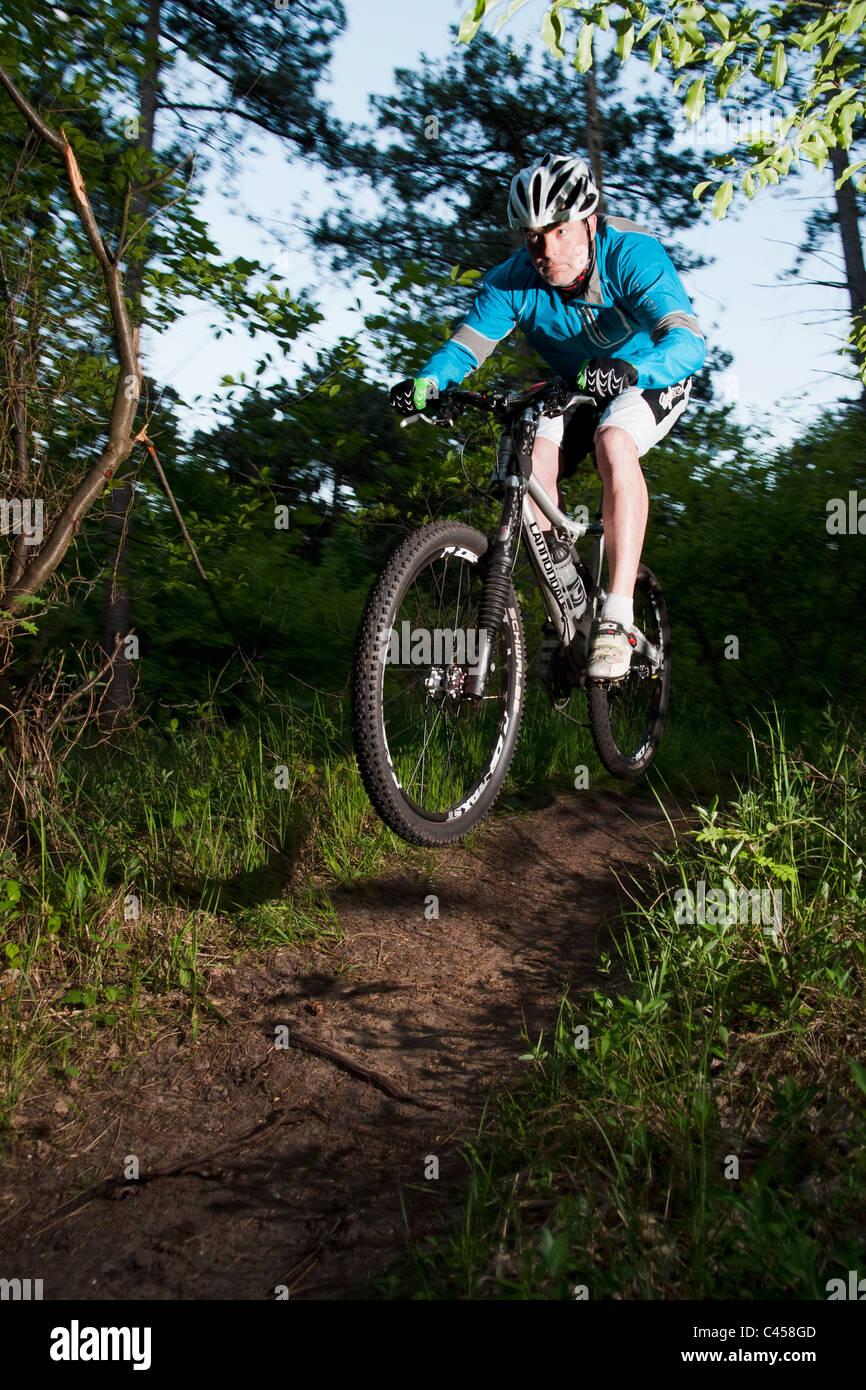 Mountain biker on national forest mountain bike trail near Noordwijk, Zuid-Holland, Netherlands - Stock Image