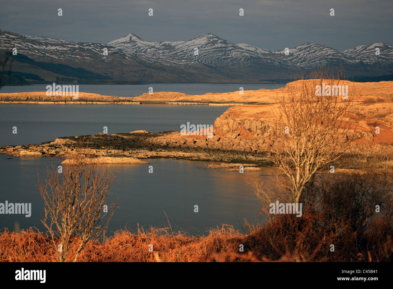 Winter sunshine over Loch Scridain on the Isle of Mull - Stock Image