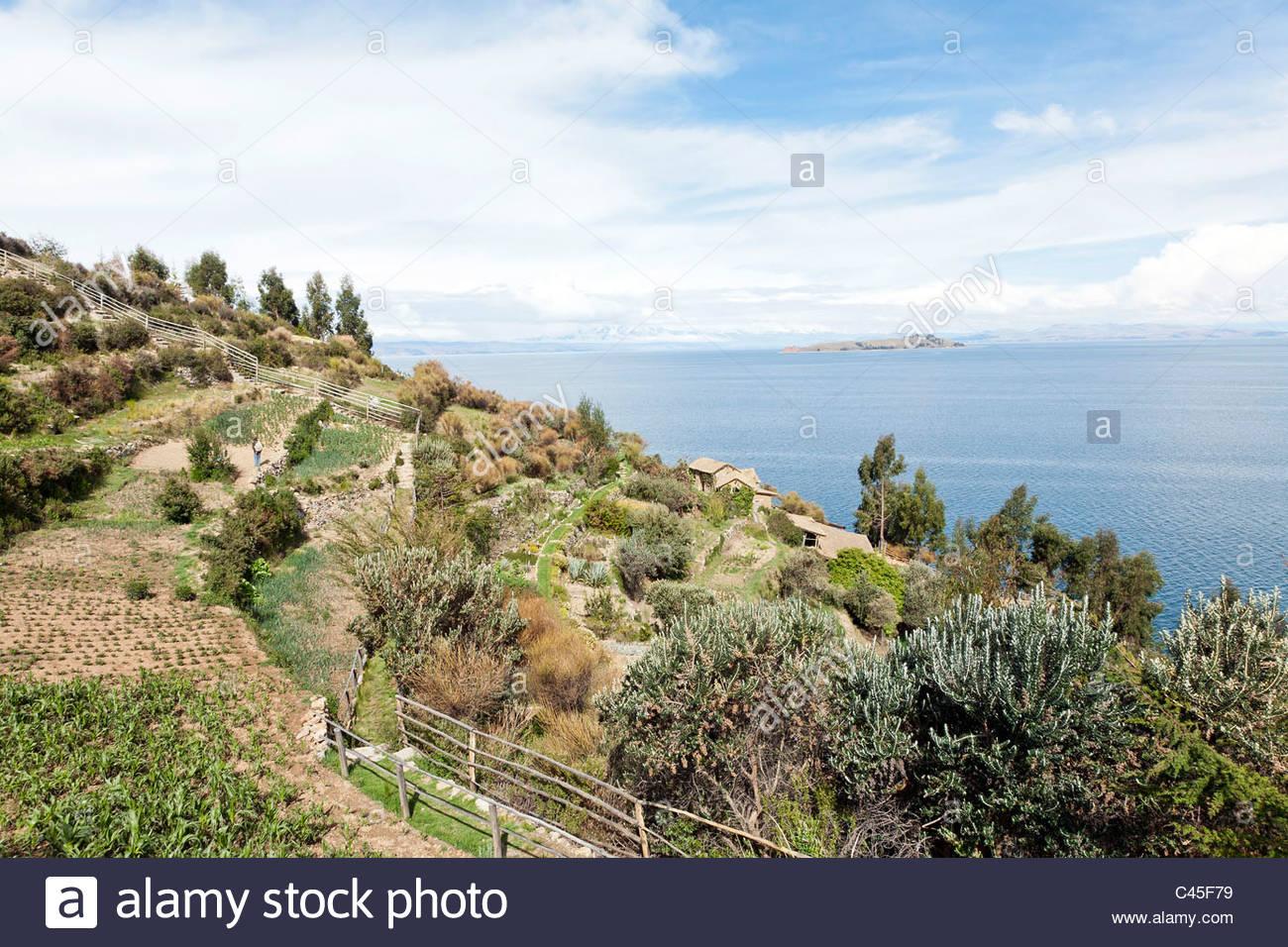 View of small farm on Isla del Sol with Isla de la Luna, the Cordillera Real and Lake Titicaca in background. - Stock Image
