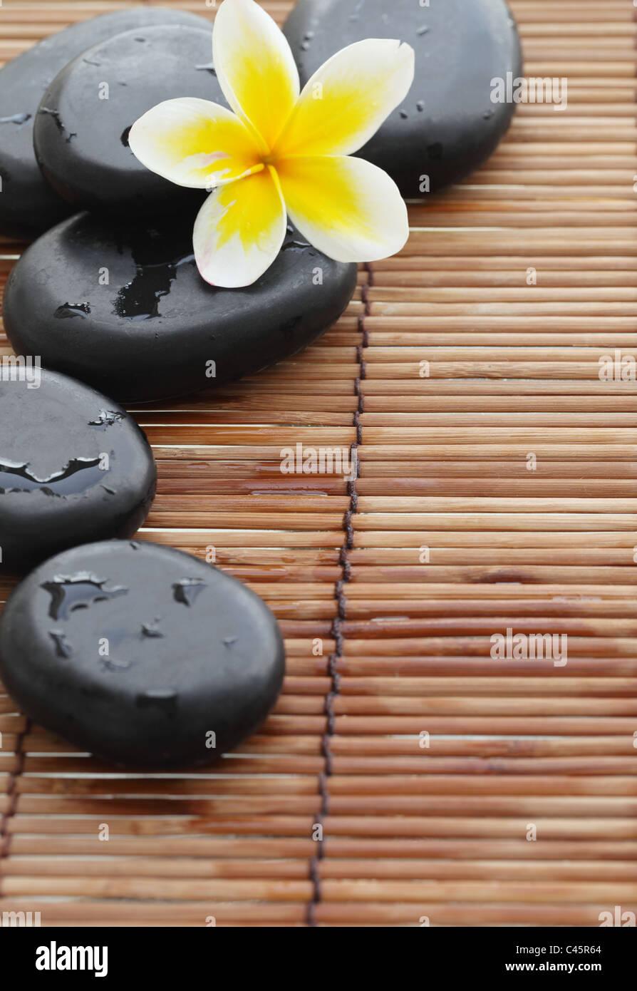 Spa still life with zen stone and frangipani flower,Closeup. - Stock Image
