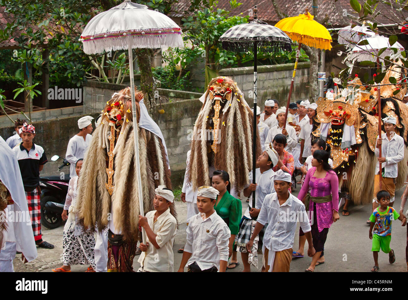 A BARONG COSTUME and LION MASKS used in LEGONG dancing during a HINDU PROCESSION for a temple anniversary -UBUD, Stock Photo