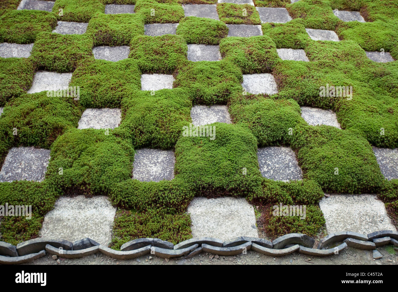At Tofuku-ji temple, garden with stones and moss arranged in a chequerboard pattern, Kyoto, Japan. - Stock Image