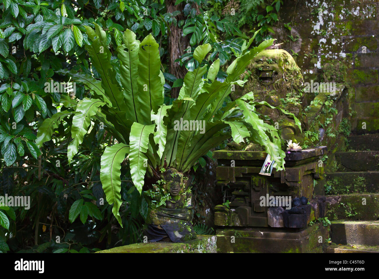 Plants grow on the Hindu temple of PURA TAMAN SARASWATI - UBUD, BALI, INDONESIA - Stock Image