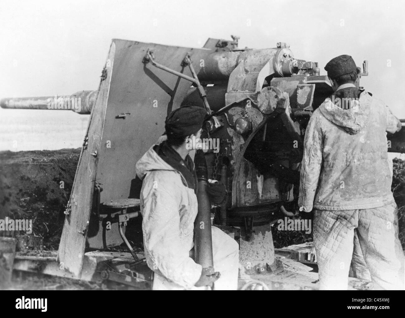 German anti-aircraft gun in Hungary, 1945 - Stock Image
