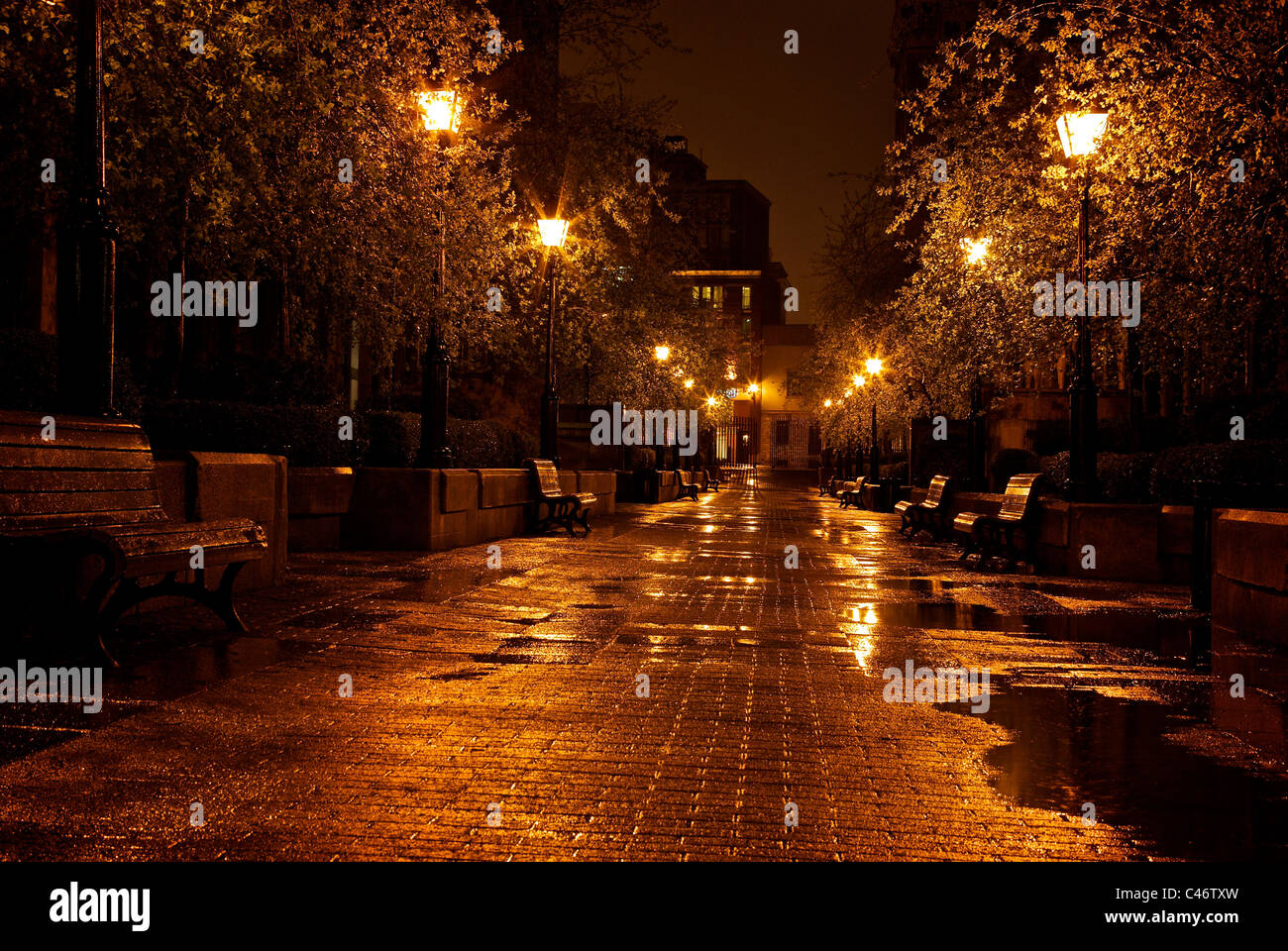 Wet trees glisten Cours le Royer on rainy night in historic old Montreal Quebec - Stock Image